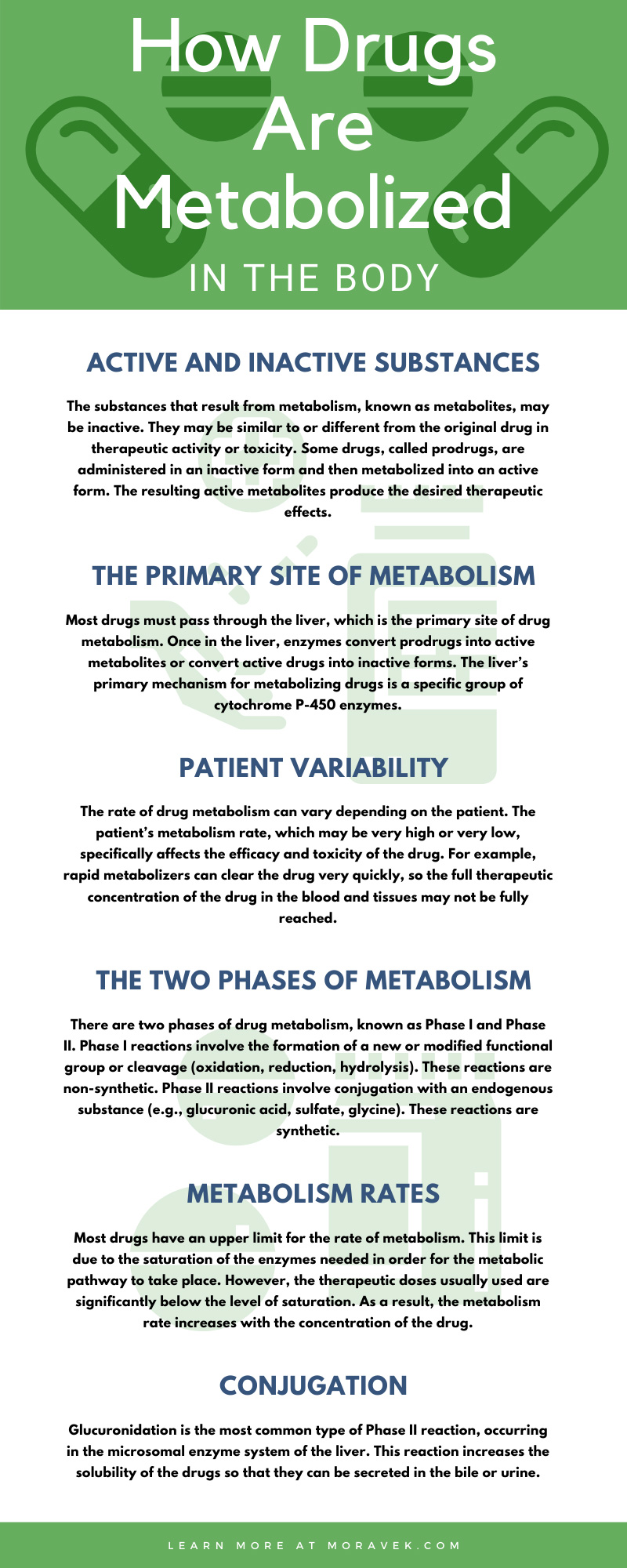 How Drugs Are Metabolized in the Body