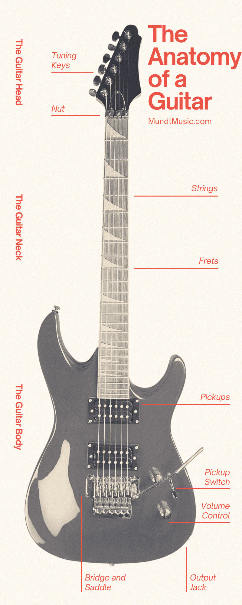 The Anatomy of a Guitar