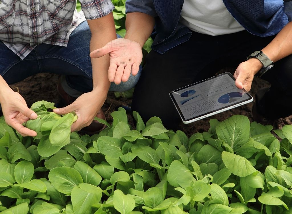 Key Advancements in Agriculture Technology