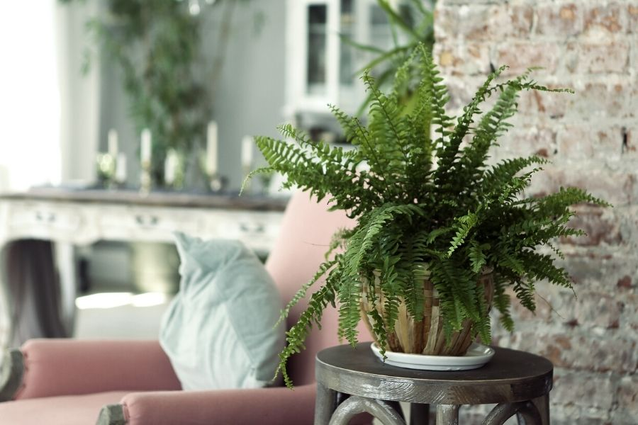 Top Home Design Trends To Try in 2021