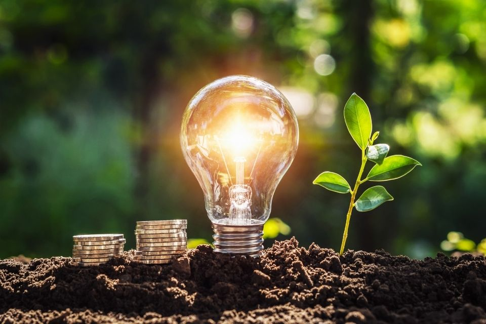 Reasons Why Your Business Needs To Pursue Sustainability