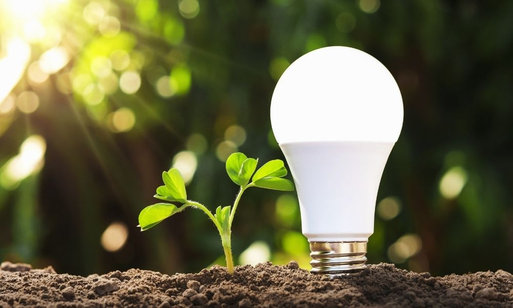 The Environmental Benefits of LED Lights
