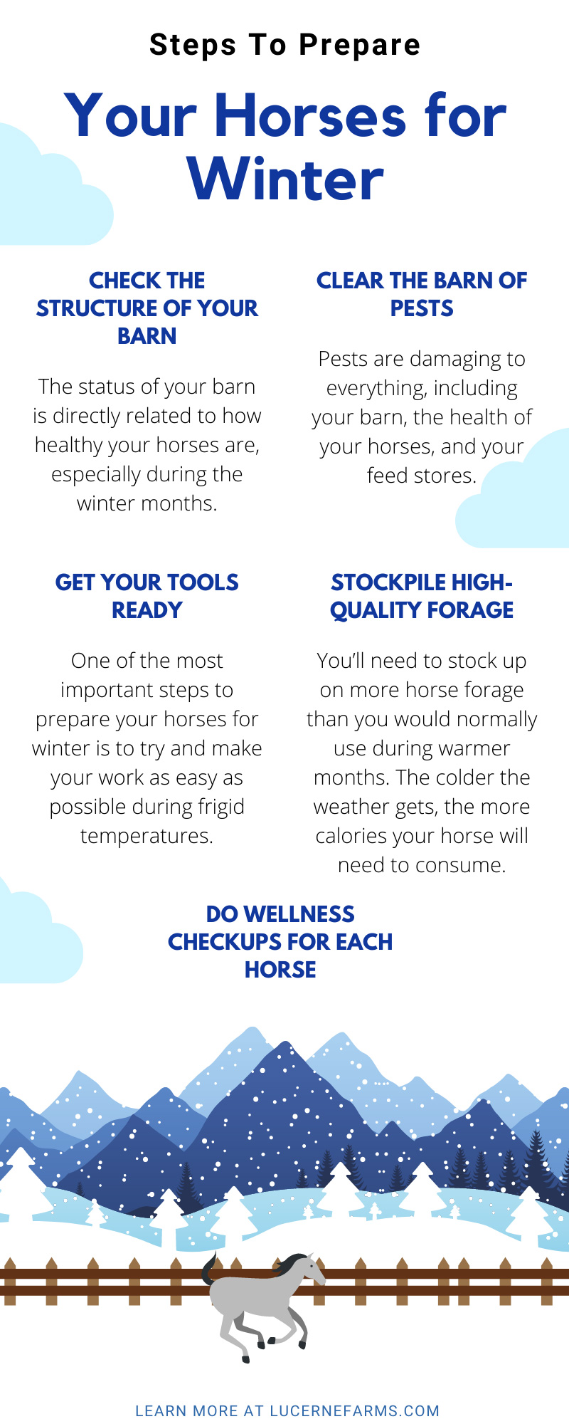 Steps To Prepare Your Horses for Winter